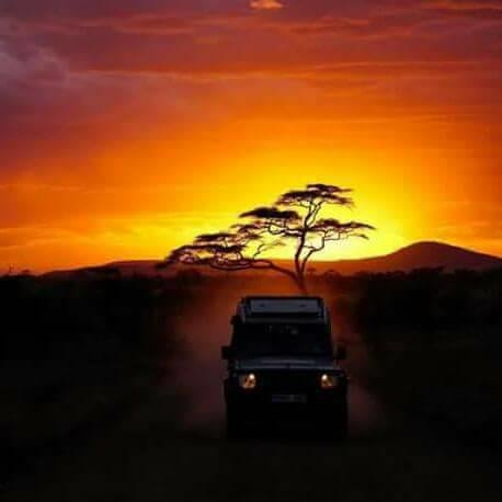 Memorable Trip West-South Tanzania from Moolight Tours Expedition Photos