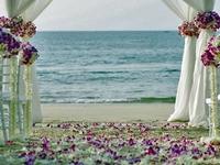 Wedding In Sri Lanka 9