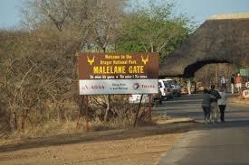 Kruger National Park Photos