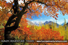 Tour To Hunza Valley In Autumn Season Pk