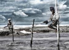 Sri Lankan Fishing