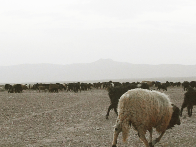 Walk with Nomads of Morocco Photos