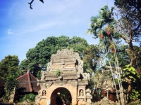Ubud Art & Culture Tour