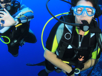 Fun Dive - 2 Dives Package for Certified Divers