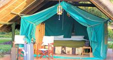 Camping Kenya Tent Africa Holiday