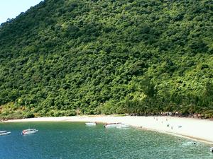 Cham Islands - Snorkeling Tour Fotos