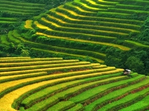 Vietnam Unfadeable Memories Photos