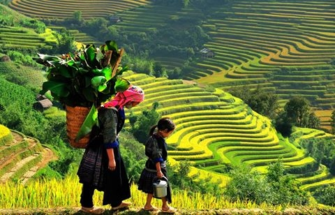 Discovery North of Vietnam from Hanoi to Halong Bay, Sapa, Ninh Binh Photos