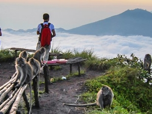 Batur Trekking in Bali Photos