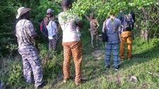Walking Safari1