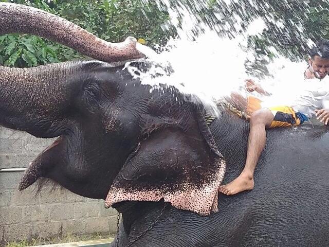 Family Vacation to Kerala Photos