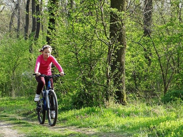 Zarand Biking Tour Photos