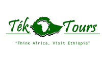 Tek Tours