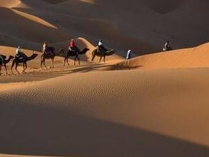 Sahara Desert Trip from Marrakech Fotos