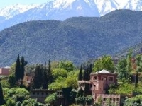 Ourika Valley Half-Day Trip from Marrakech