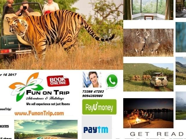 Wildlife South India Tours Photos