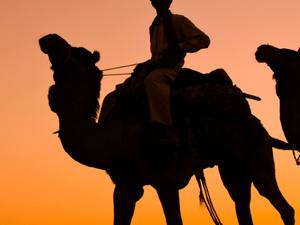 Classical Rajasthan Photos