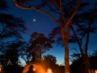 Big Cat Safari Kenya & Tanzania