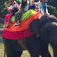 Ceylon Island Travel Discover Sri Lanka Tour Habarana Elephant Ride