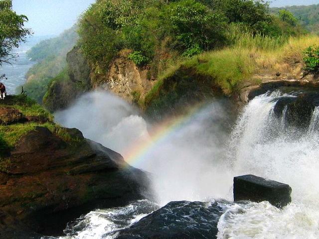 Where Scenic Falls Meet the Wild Photos