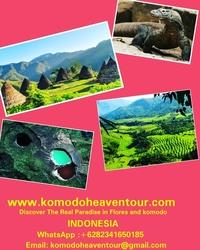 Floreskomodo Tour