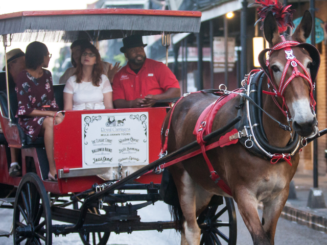 Save $$ on Carriage Tours Photos