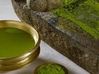 Body Detoxification by Ayurveda