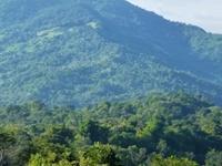 Sol Mountain View