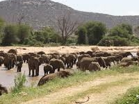 Samburu, Lake Nakuru & Masai Mara