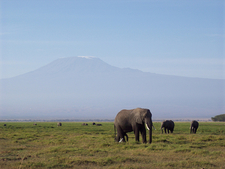 Kilimanjaro National Park, Tanzania