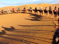 Tour To Desert Sahara