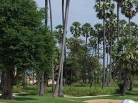 Angkor Golf 01