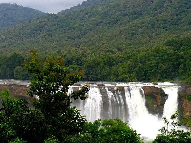 Kochi, Munnar, Thekkady, Kumarakom, Alleppey Tour Photos
