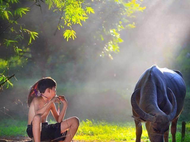 Vietnam Luxurious Majestic Trip Photos
