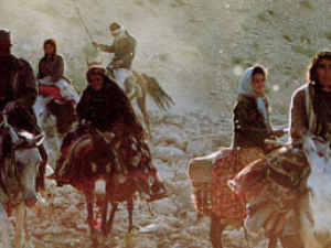 Nomads of Iran Photos