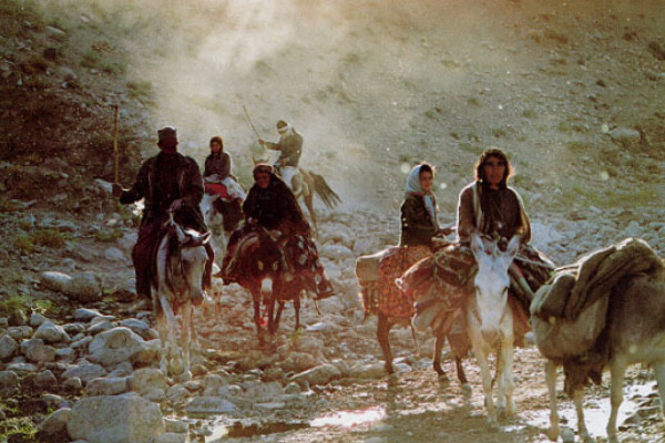 Nomads of Iran Photos