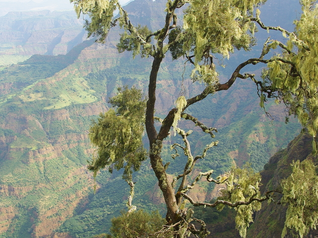 Simien Mountains National Park Trekking Photos