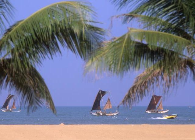 Nature tour of Sri Lanka. Photos