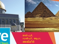 Olive Tours Ad