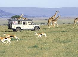 Best of Nairobi Photos