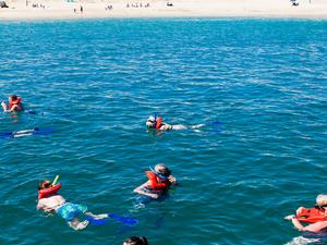 Cabo Escape Snorkel Breakfast Fotos