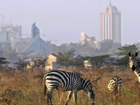 Nairobi Full Day Excursions