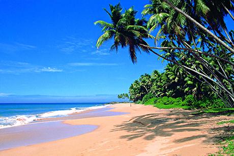 Sri Lanka Mini Tour Photos