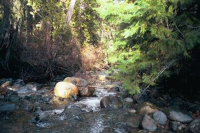 Little Applegate River