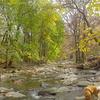 Cobbs Creek