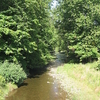Plunketts Creek