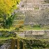 Belize New River Cruise and Lamanai Mayan Ruins Day Trip by Air from Ambergris Caye