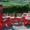 Bottleneck Drive Wine Trail Tasting Tour from Kelowna
