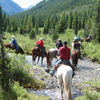 Horseback-Riding Tour in Banff with Optional BBQ Lunch
