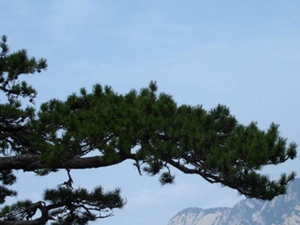Small-Group Hiking Tour of Hua Shan from Xi'an Photos